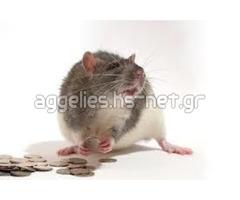 Find Your spiritual rats money Amagundane sangoma +27634299958 in Dublin